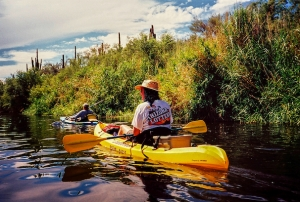 BIRDING ALONG THE SALT RIVER-