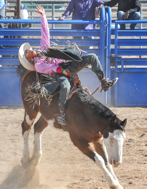 76th SELLS RODEO and FAIR lr4305