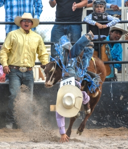 SACATON JR RODEO 5325