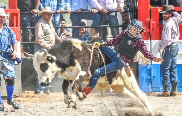 SACATON JR RODEO 5467