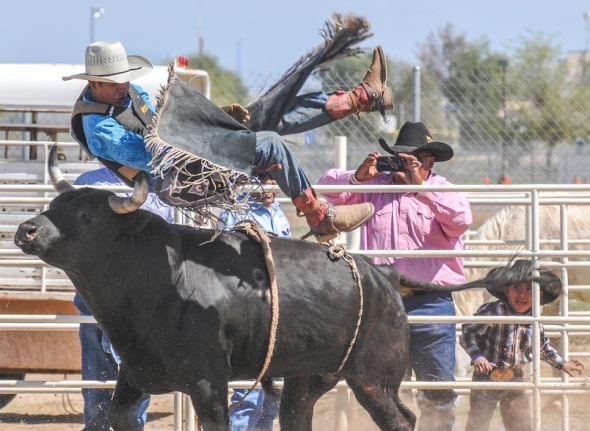 SACATON JR RODEO 5576