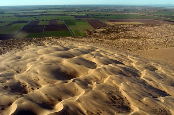 Mexico has reclaimed this rich farmland from the golden dunes but for how long ?