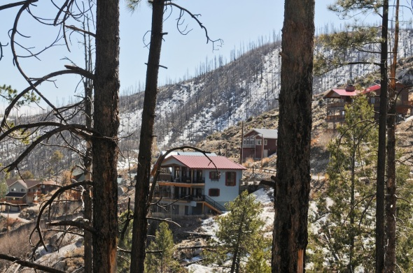 Once Mt Lemmon's Cabins were hidden in a carpet of trees, now the plants get plenty of sun.