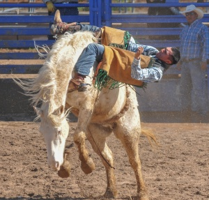 SELLS RODEO, FAIR, TOKA TOURNEY-7700
