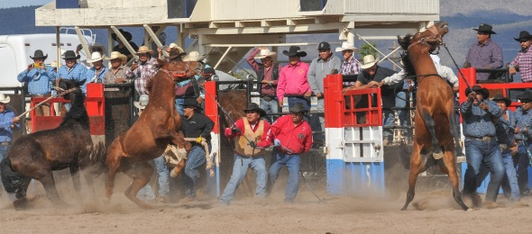 SACATON POWOW & RODEO, FAIR-9796
