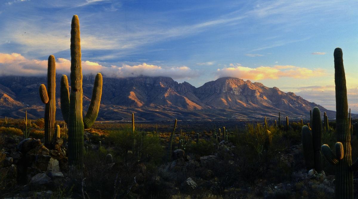 apache sunrise ceremony essay