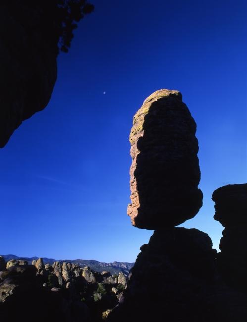 Chiricahua