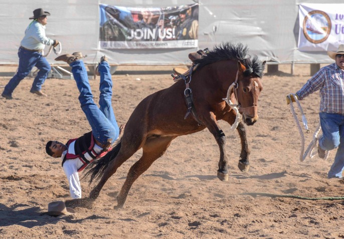 sells-rodeo-2017-9068